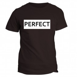 T-shirt z napisem - PERFECT